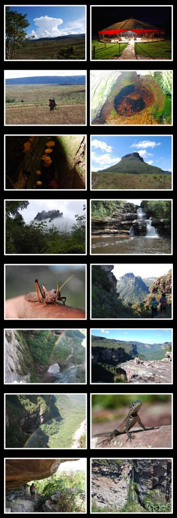 expedicao-Folha-Online1_fot