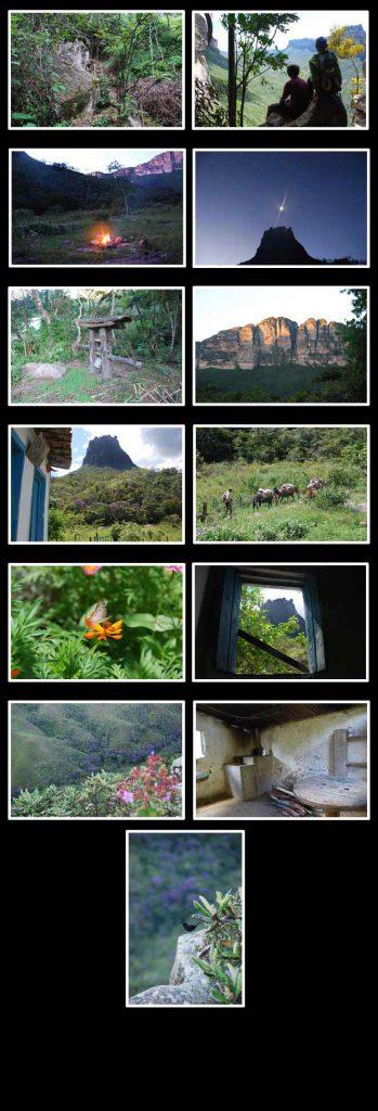 expedicao-Folha-Online2_fot